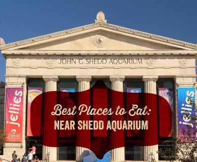 Best Places To Eat Near Shedd Aquarium Giordano 39 S